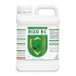 Bioactivador radicular con efecto protector