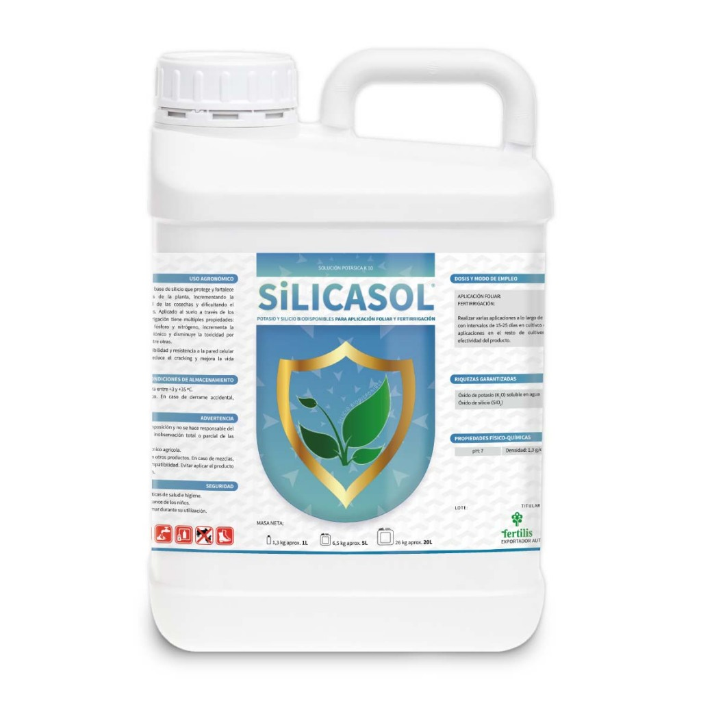 Silicio biodisponible